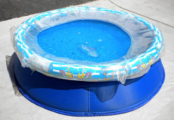 Spa Solar Water Heating Film helps heat a small kiddy pool